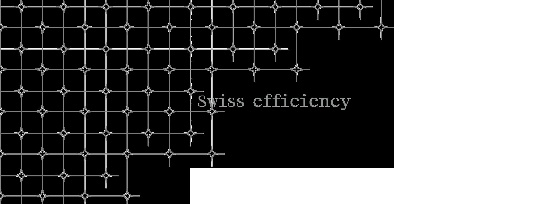 swissefficicency 1