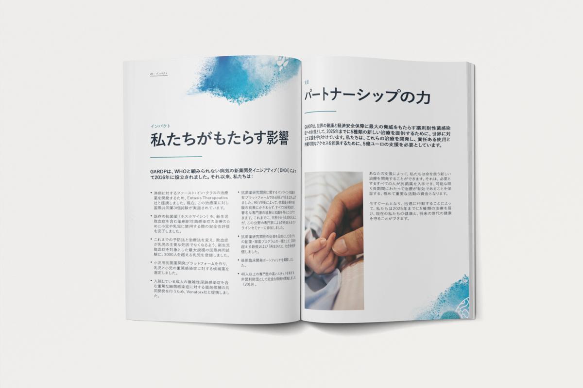 gardp casestudy japanbrochure3