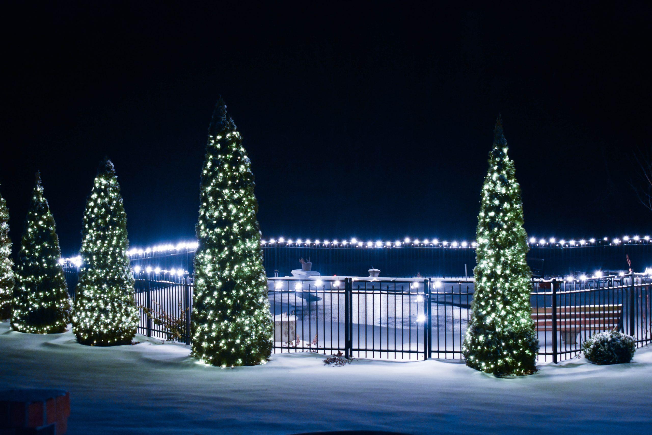 interchangeable Christmas trees