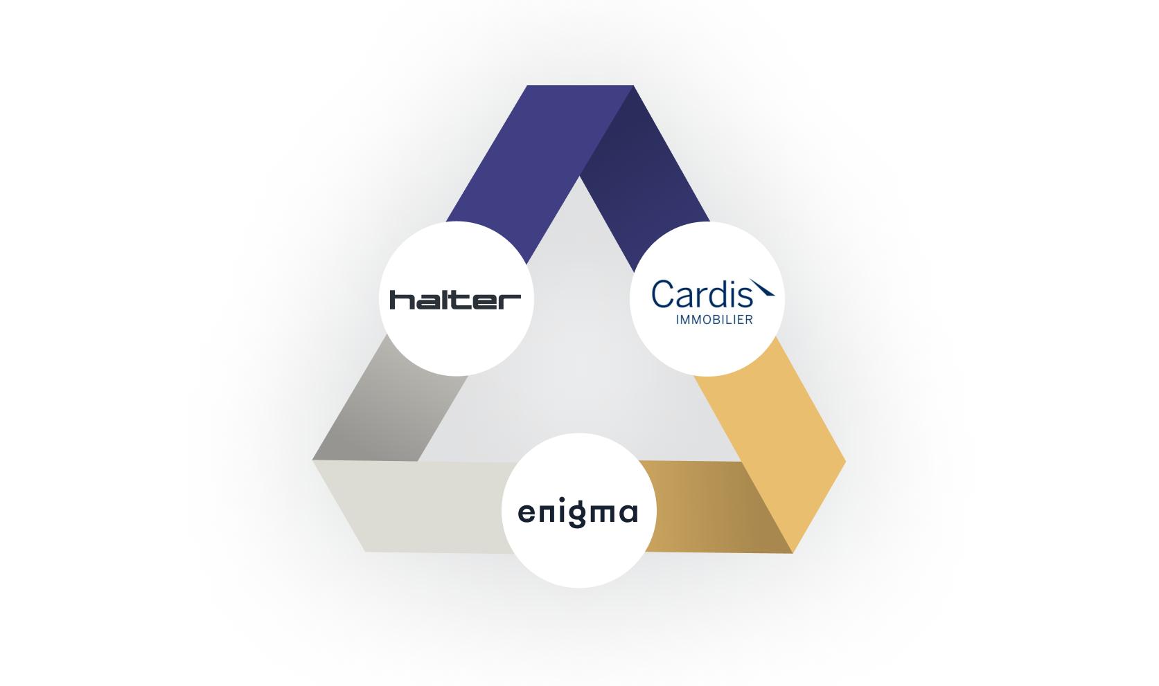 Logos Halter Enigma